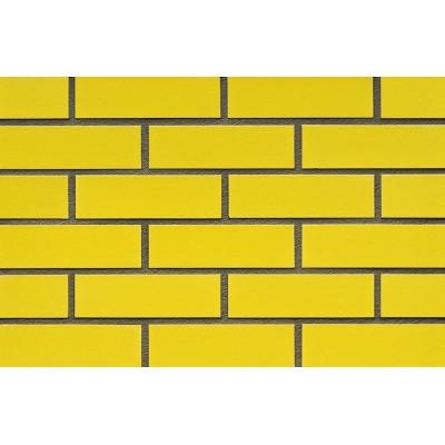 Фасадная плитка ABC - Rapsgelb 310